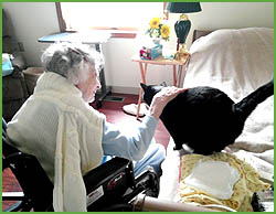 Senior Memory Care Facility - Northern Lehigh Valley PA - Pet Friendly